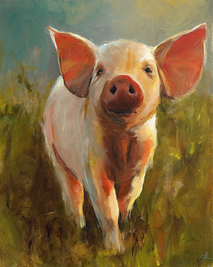 morning-pig-cari-humphry